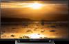 Sony Bravia KD-55XE8396