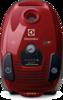 Electrolux ZSPPARKETT vacuum cleaner front
